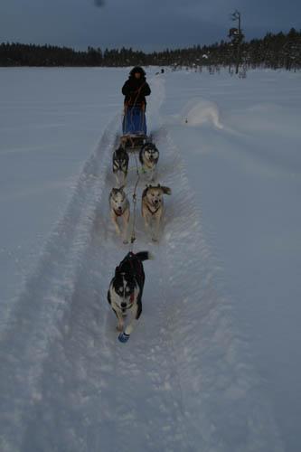 Vi följer våra spår då snön snabbt blir lös här uppe i Lappland.