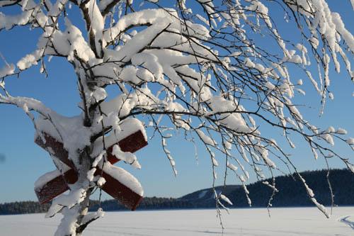 Svenska Lappland har ett välmärkt ledsystem.
