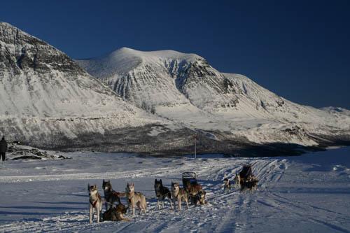Fotosafari i Kurravagge, Lapplandsfjällen.